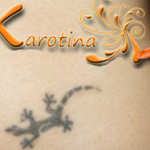 2013 07 05-review-antonella-di-riso-tattoo-tatuaggio-geco-jek