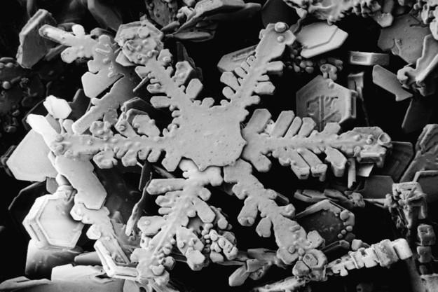 neve diario karotina gennaio 2014